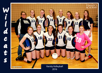 2016 HS Volleyball