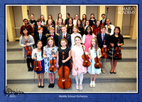 2015 MS Orchestra